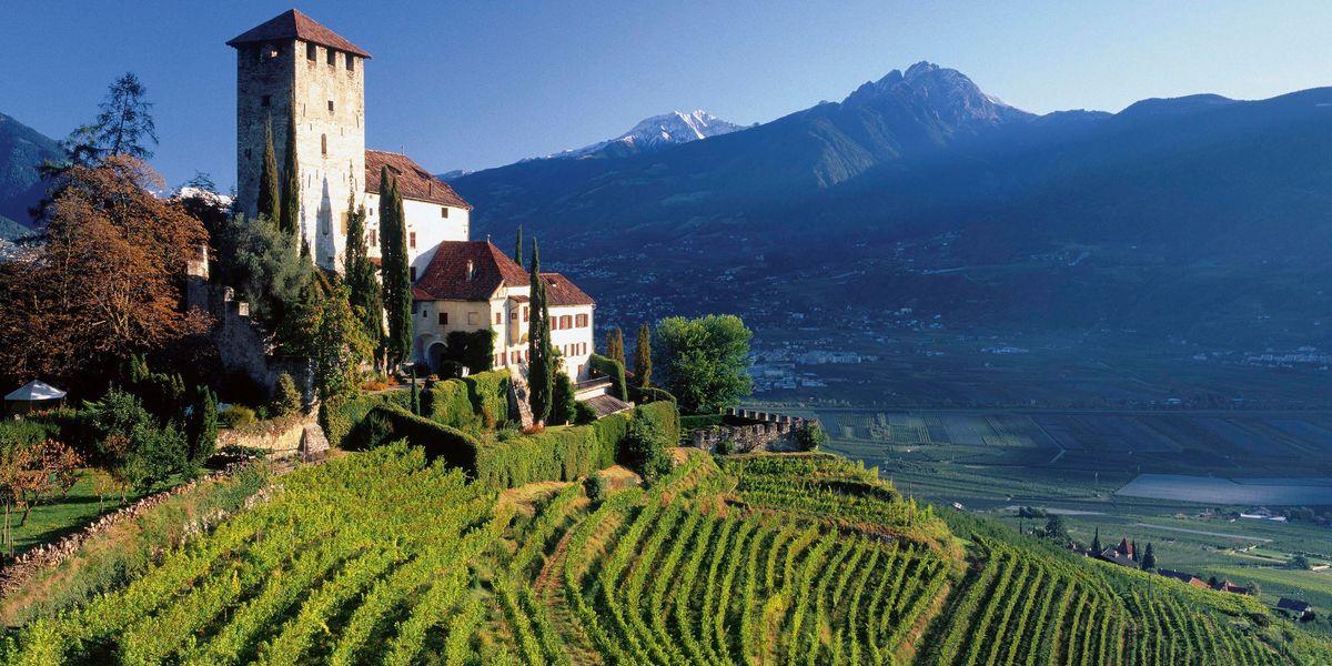 Turismo nel bicchiere: tre idee per un giro tra le vigne