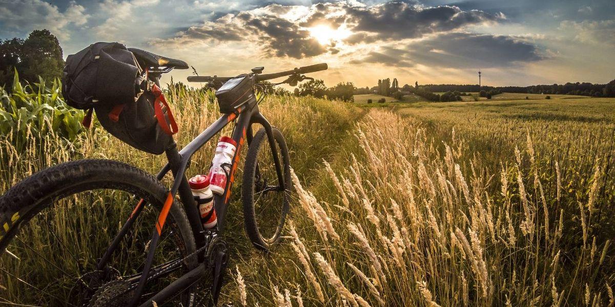 bici-pedalata