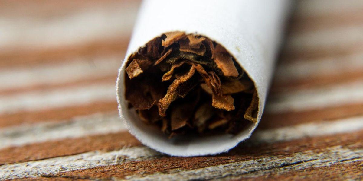 tabacco-apertura