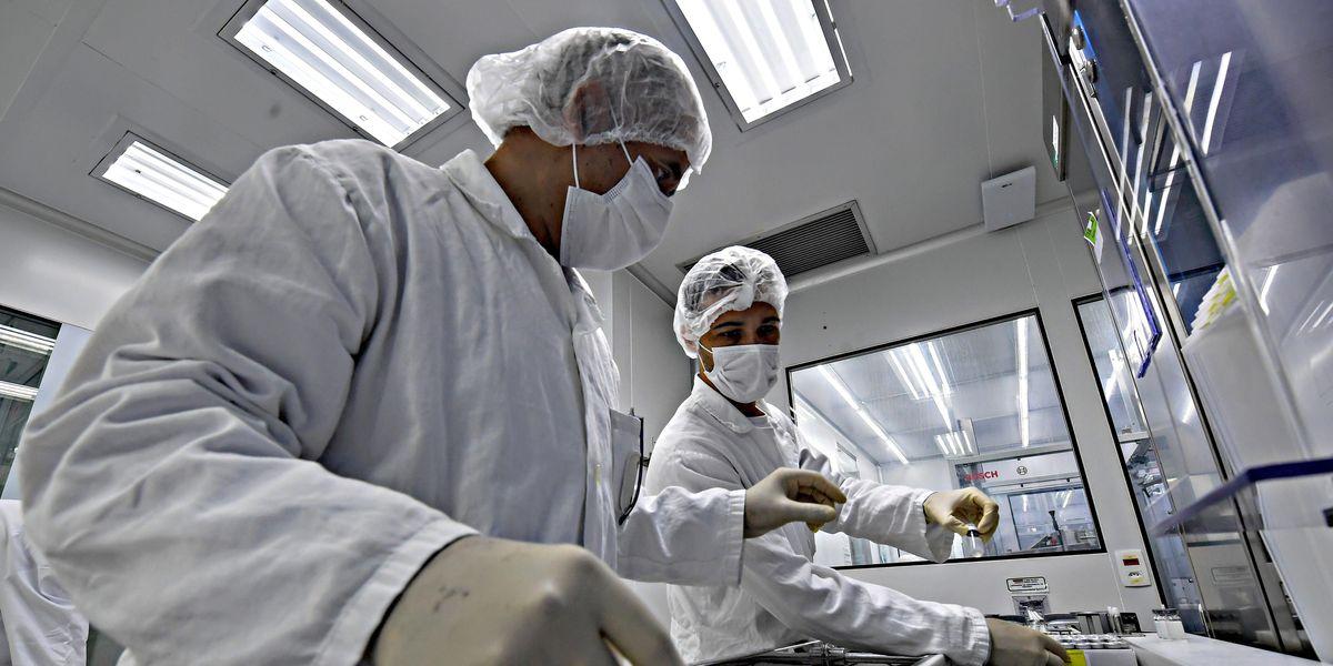 vaccino covid produzione