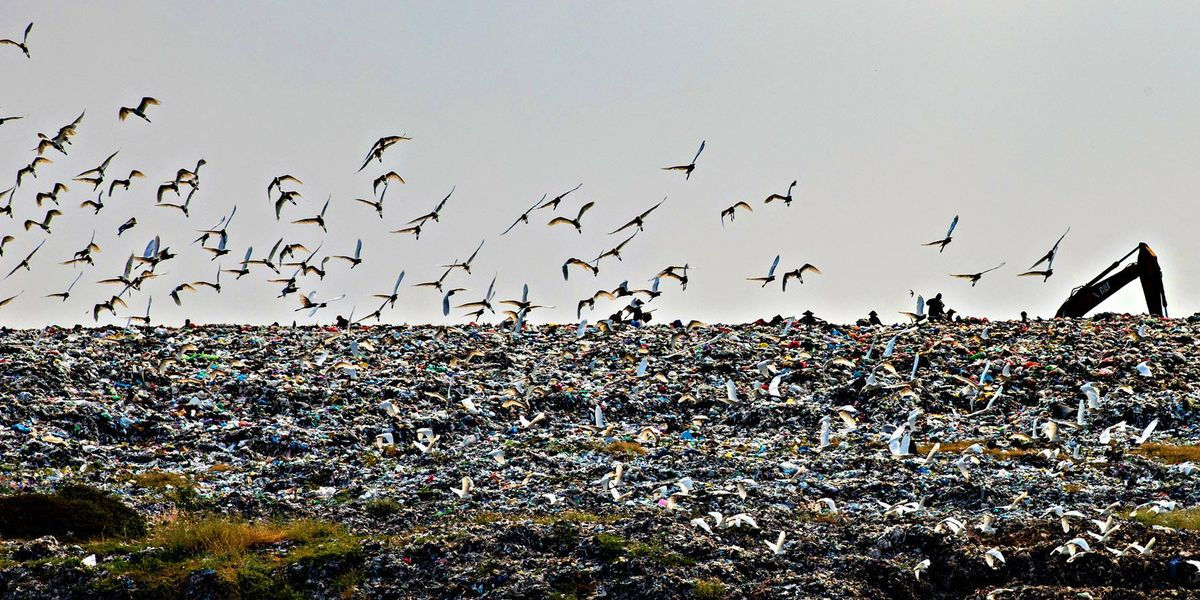 inquinamento plastica green new deal