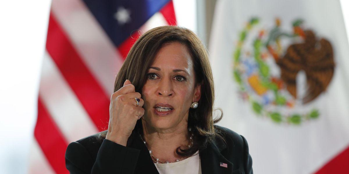 Kamala Harris, che bluff: è il vicepresidente meno amato della storia. E i dem la cancellano dai comizi