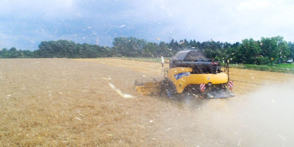 agricoltura germania