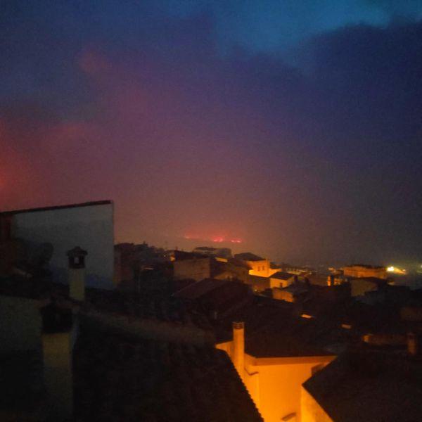Gli incendi in Sardegna, un disastro per l