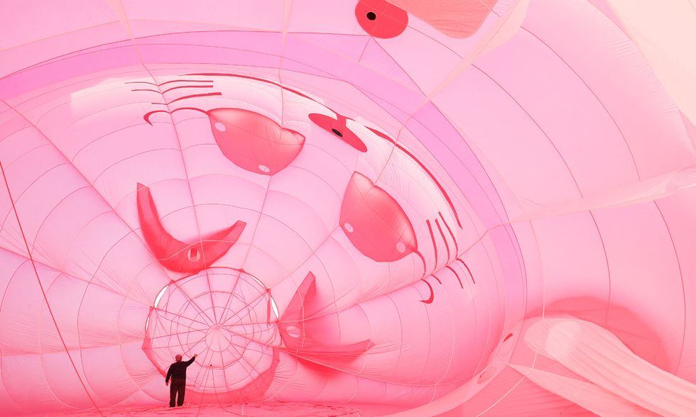 Festival delle mongolfiere in Nuova Zelanda