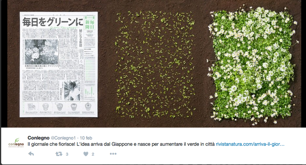 Il giornale che fiorisce