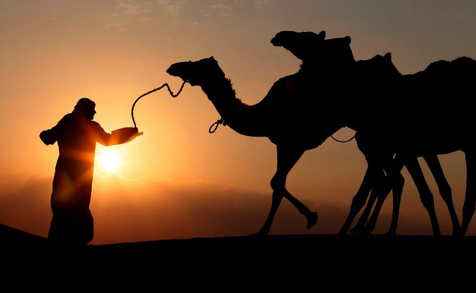 Viaggio nel deserto arabico
