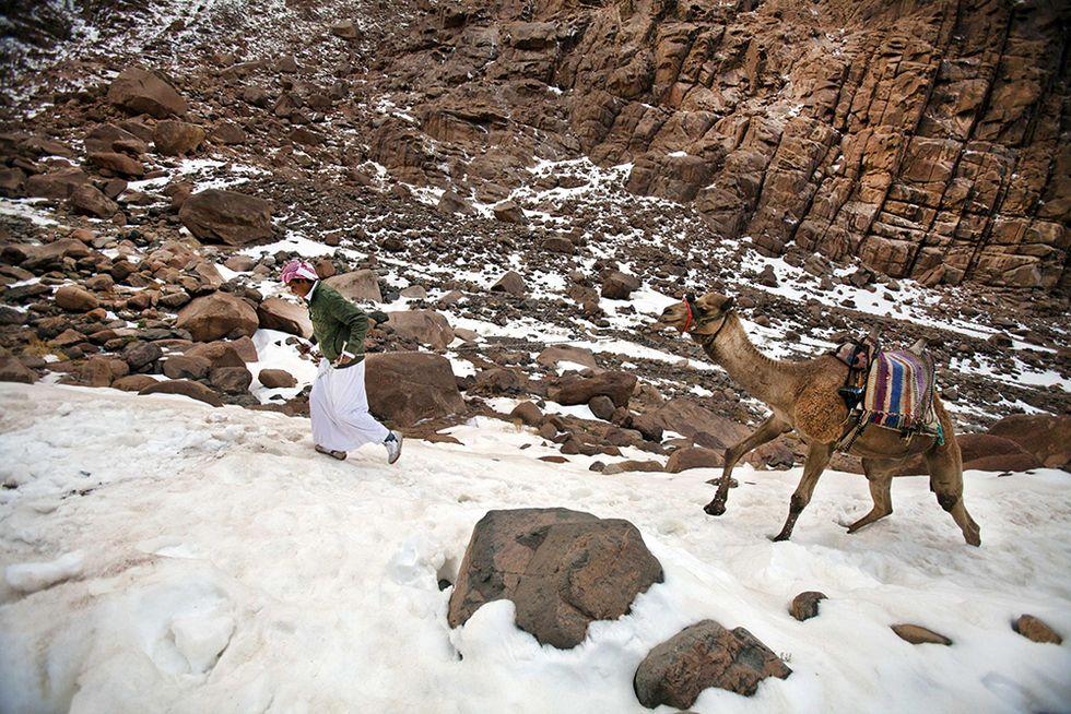 La neve in Egitto dopo 112 anni e altre foto del giorno,18.12.2013
