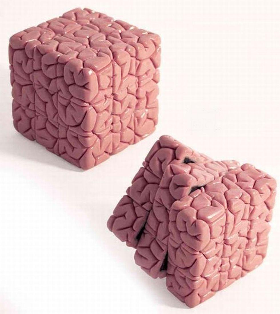 La feroce psicologia: sull'utilità e il danno del pensarci bene per la vita e la letteratura