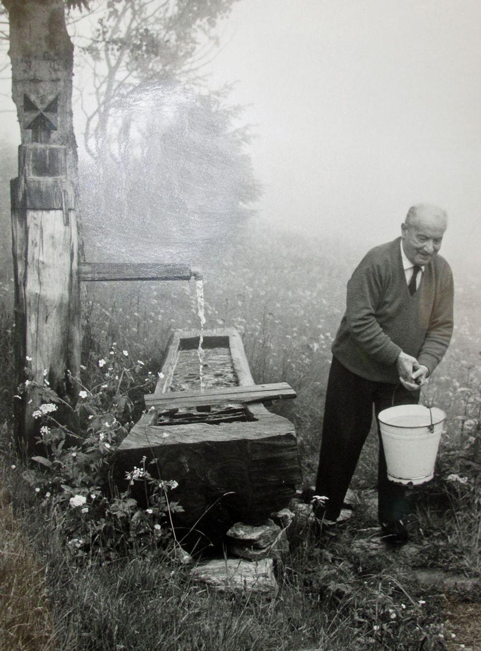 «Un ruminante della filosofia, un imbecille delle Prealpi». Contro Heidegger: il sadismo maniacale e esilarante di Bernhard