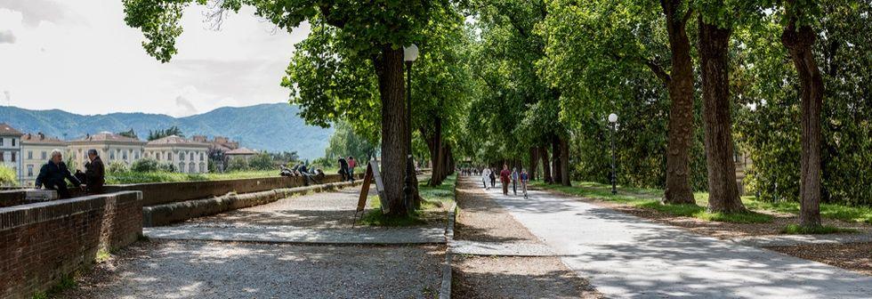 Nicola Ughi. Around the wall: Lucca on Twin Camera