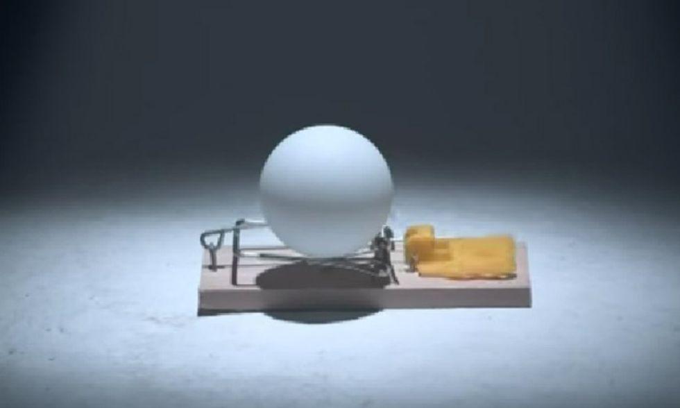 Trappole per topi + palline da ping