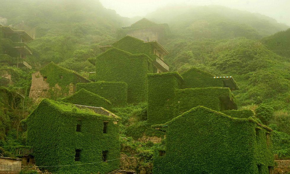 Cina, il villaggio fantasma divorato dall'edera