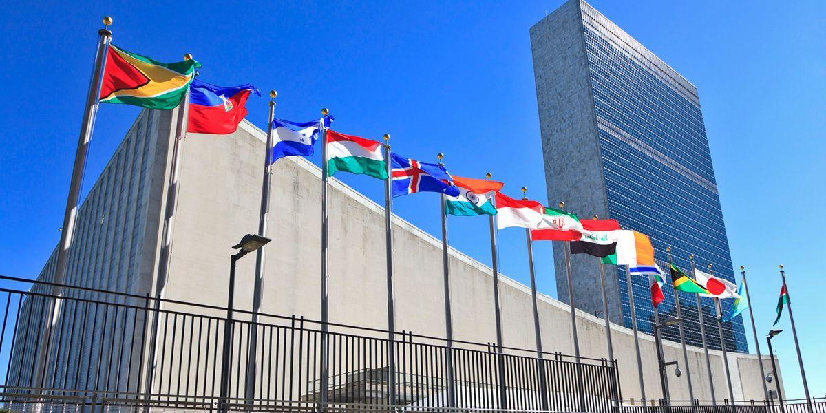 Per l'Onu l'uomo è la causa di ogni male e con il Covid viene a galla il patriarcato