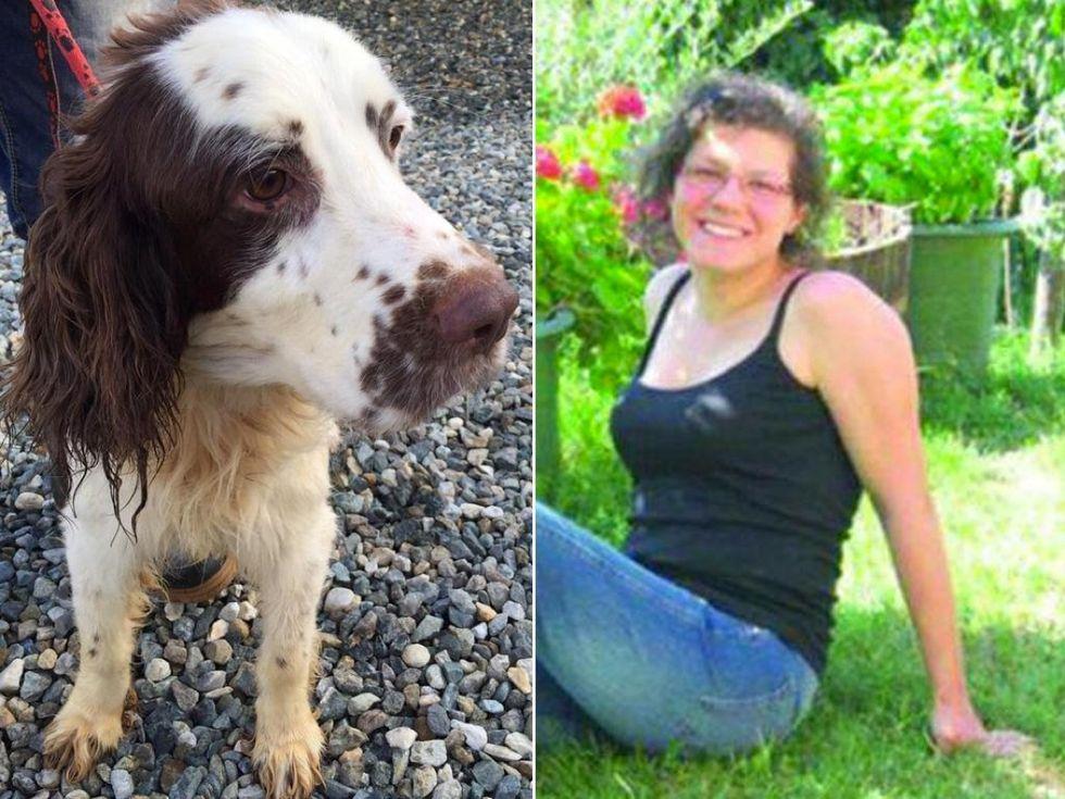 Elena Ceste, ecco perché il marito Michele Buoninconti è stato condannato