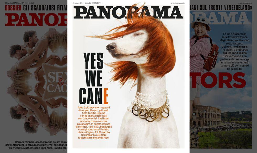 panorama-copertina35