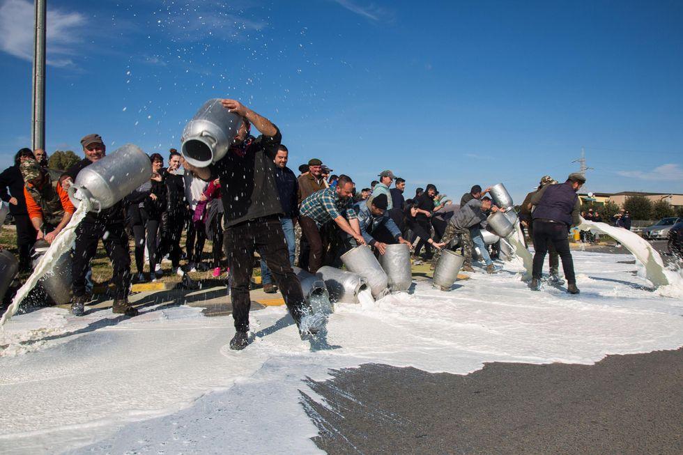 pastori Sardegna latte protesta
