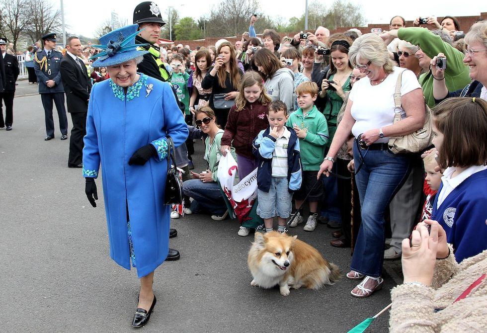 Elisabetta II dice basta ai Corgi. Troppo anziana per i cani