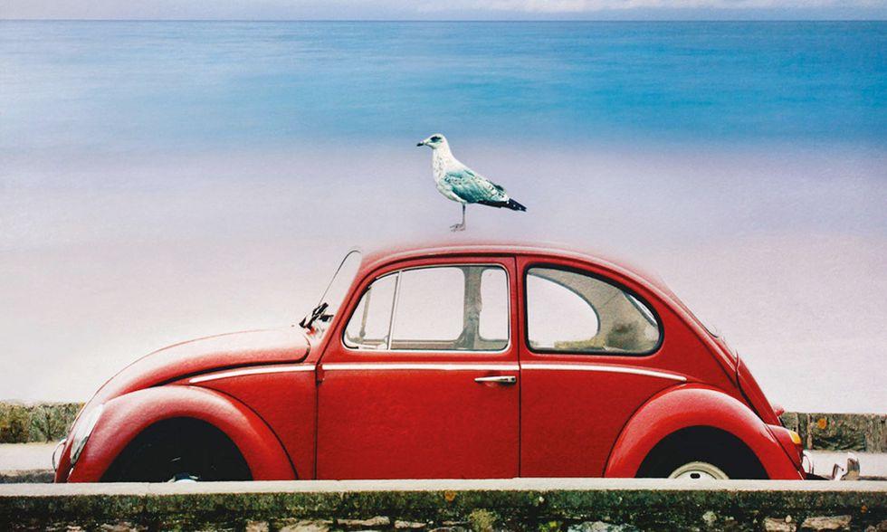 Massimo Onofri, 'Passaggio in Sardegna' - La recensione