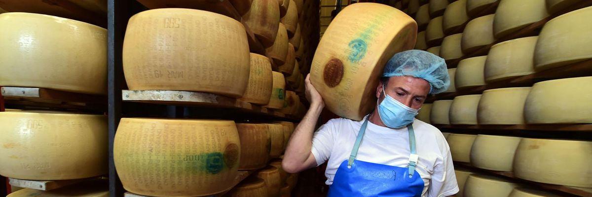 un magazzino di Parmigiano reggiano