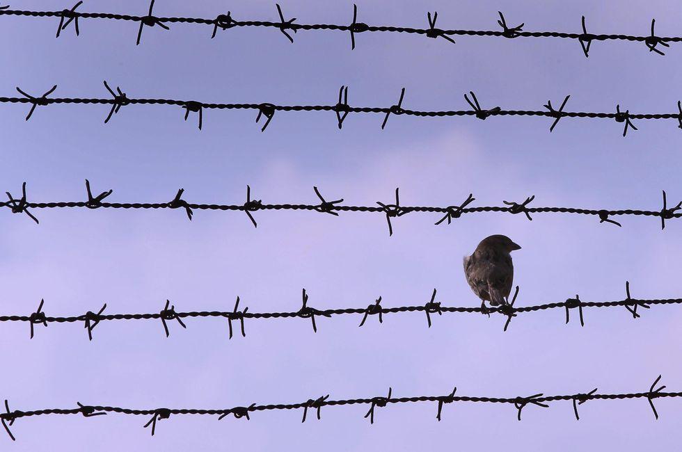 Non solo marò: sono 3.103 gli italiani prigionieri all'estero
